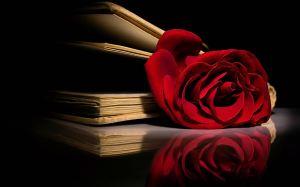 RedRose&Book