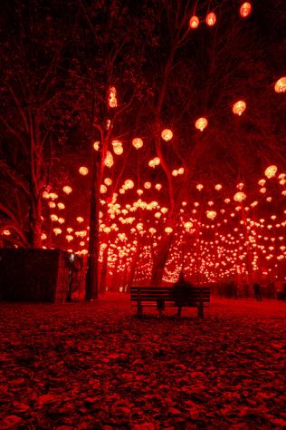 LanternFestival, France