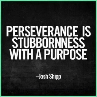 PerseveranceIsStubbornnessW:Purpose